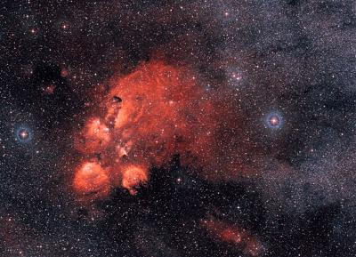 Wide Angle: The Cat's Paw Nebula