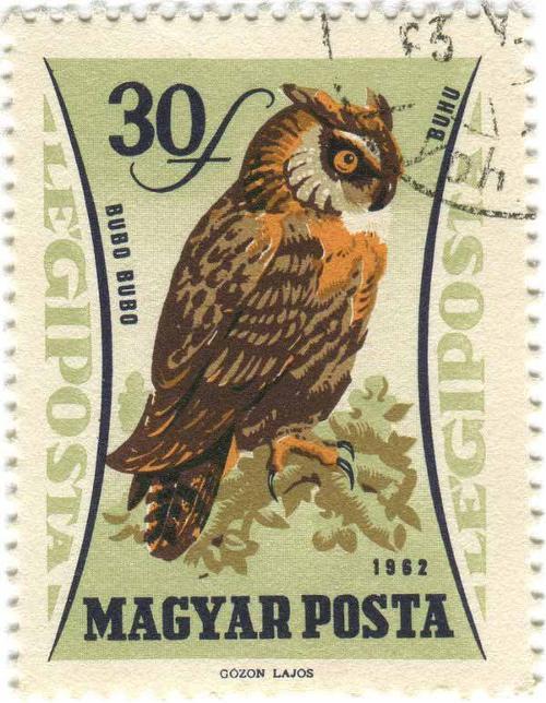 1962 Hungary - Owl