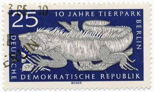 1965 DDR - Iguana