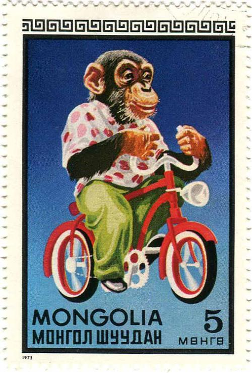1973 Mongolia - Chimp on Bicycle