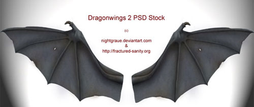 Dragon wings free psd file