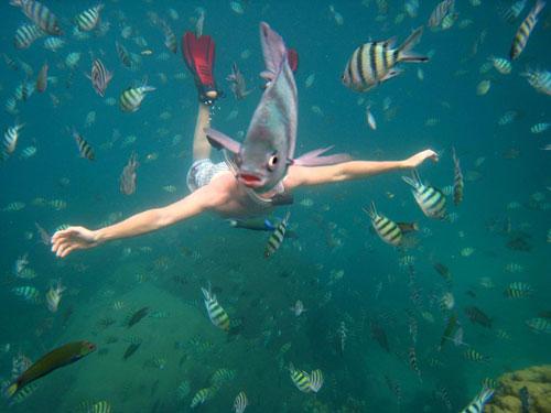 snorkeler underwater thailand photography